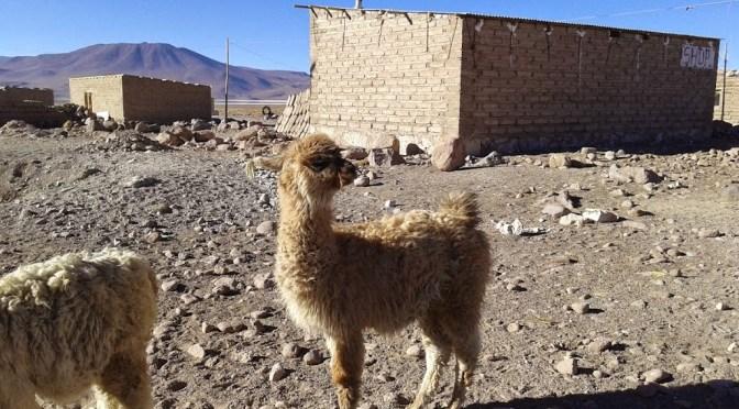 La peor noche de mi vida, en Bolivia