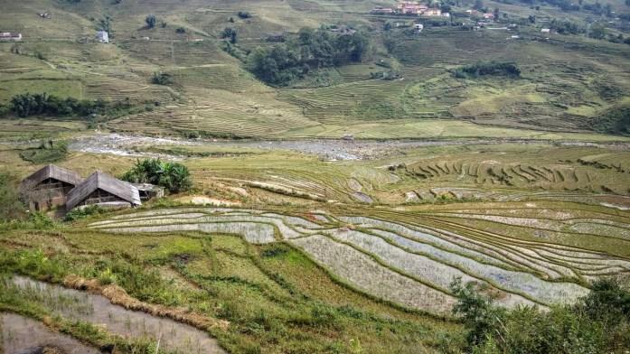 Campos de arroz, Lao Chai, Vietnam, 2015