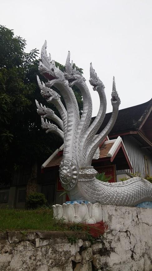 Serpientes plateadas, Luang Prabang, Laos, 2015