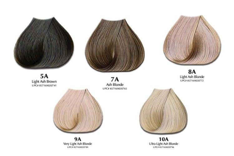 The Best Ash Hair Color Chart Will Ash Hair Color Offset Orange Pictures