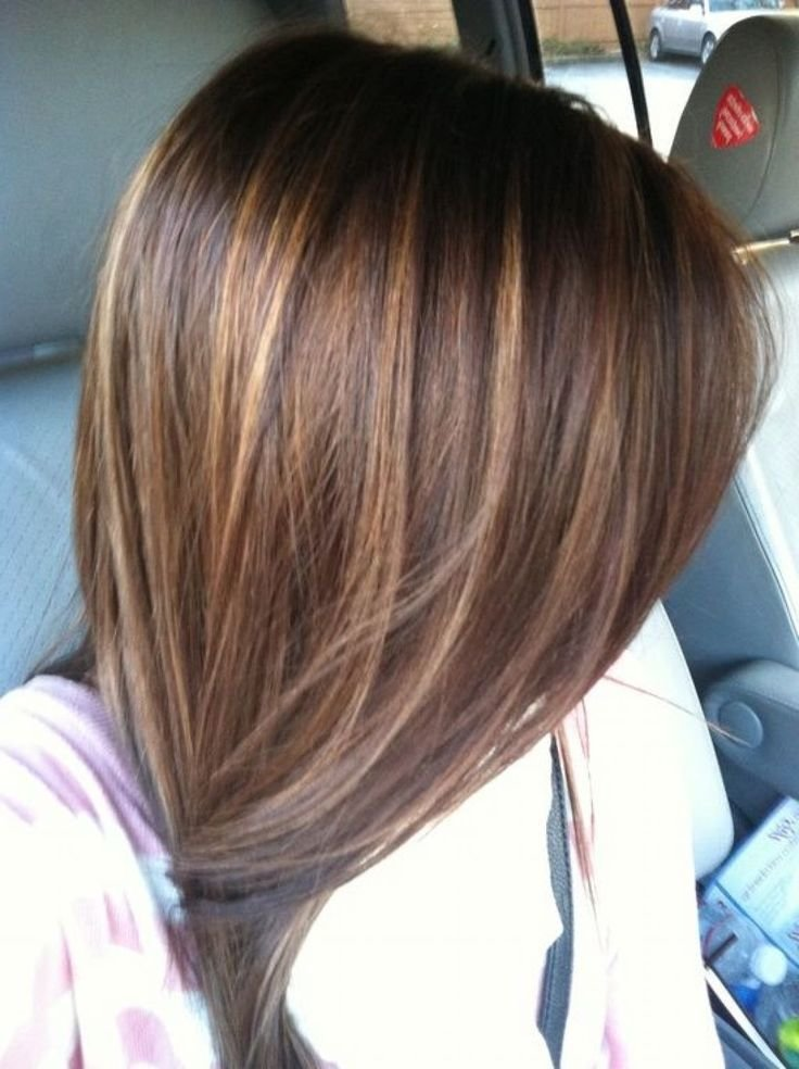 The Best Image Result For Straight Dark Brown Hair With Highlights Pictures