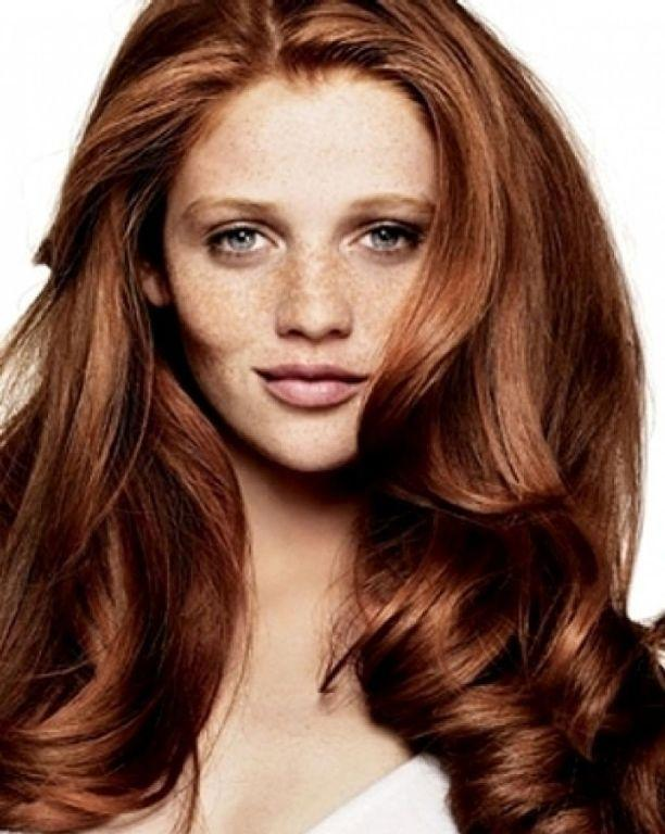 The Best Best 25 Chestnut Hair Colors Ideas On Pinterest What Is Pictures