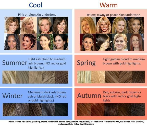 The Best Cool Warm Hair Color Chart How To Determine Which Season Pictures