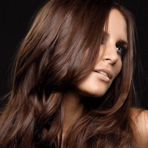 The Best Best 25 Chocolate Brown Hair Color Ideas On Pinterest Pictures