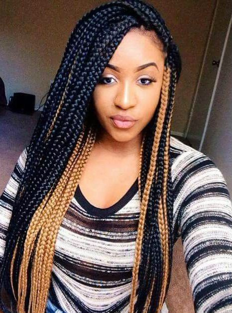The Best Long Braided Hairstyles For African American Women Pictures