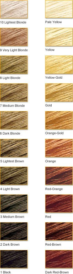 The Best Clairol Color Wheel Color Theory From The Clairol Pictures