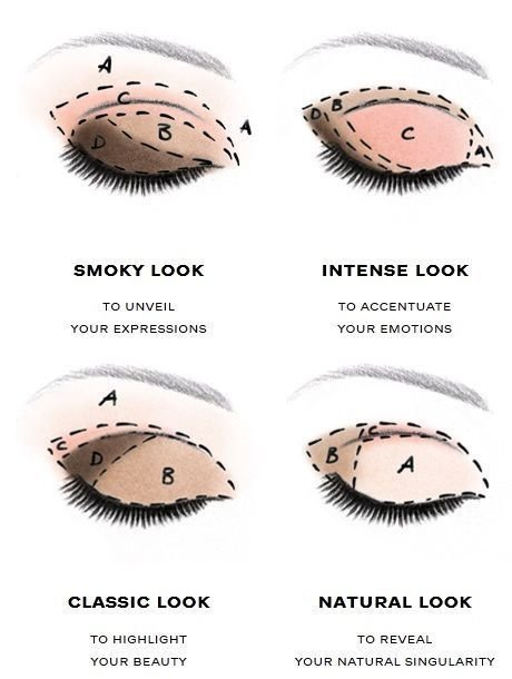 The Best Handy Infographic Which Shows You Were To Apply Eyeshadow Pictures