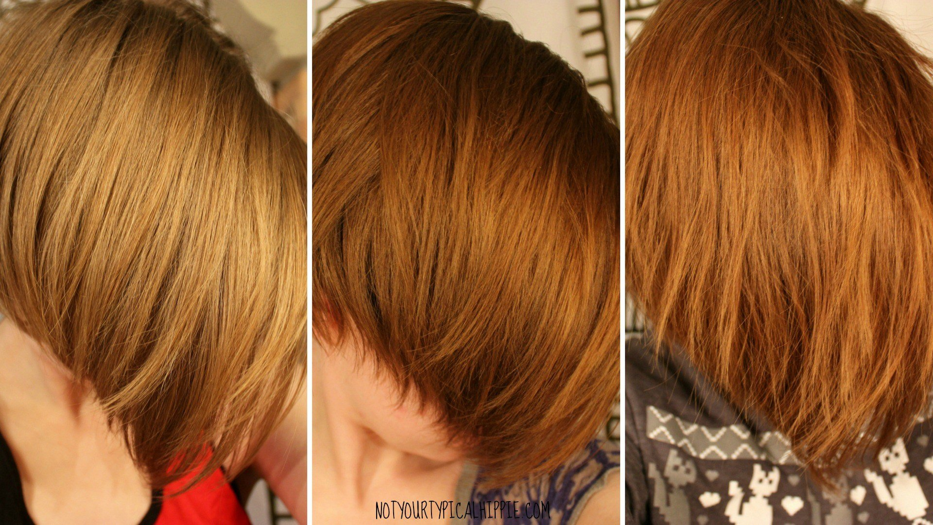 The Best Light Mountain Natural Henna Hair Dye Review Pictures
