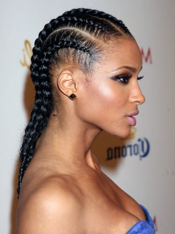 The Best 68 Inspiring Black Braid Hairstyles For Black Women Pictures