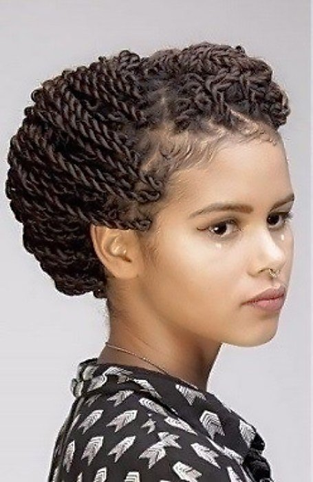 The Best 27 Chic Senegalese Twist Hairstyles For Women The Trend Pictures