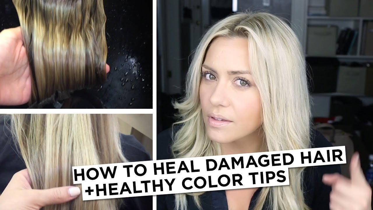 The Best How To Heal Damaged Hair Healthy Color Tip Youtube Pictures