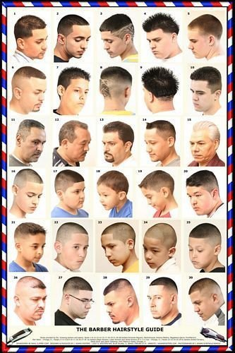 The Best Barber Fade Styles Hair Chart Men Pinterest Shops Pictures