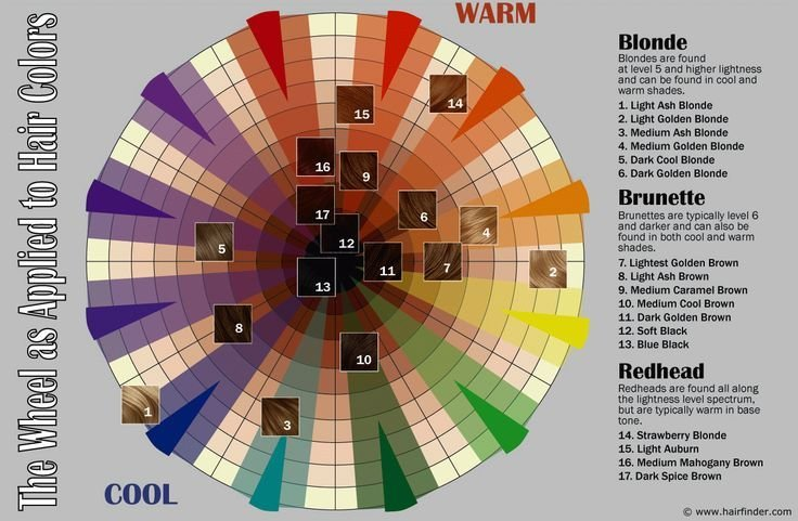 The Best 25 Best Ideas About Hair Color Wheel On Pinterest Color Pictures