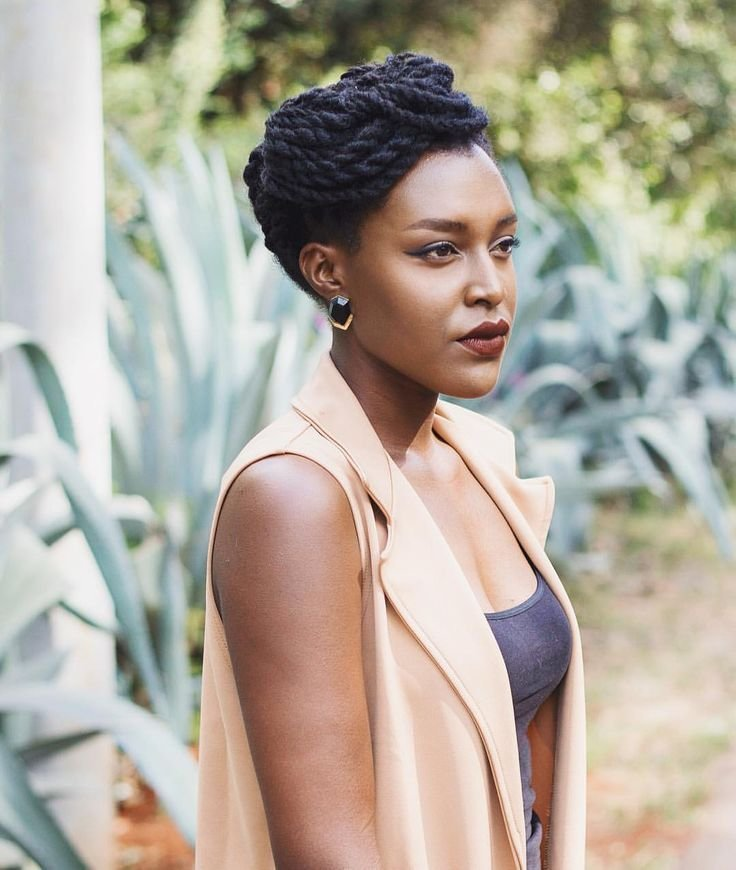The Best 25 Best Ideas About Natural Protective Hairstyles On Pictures