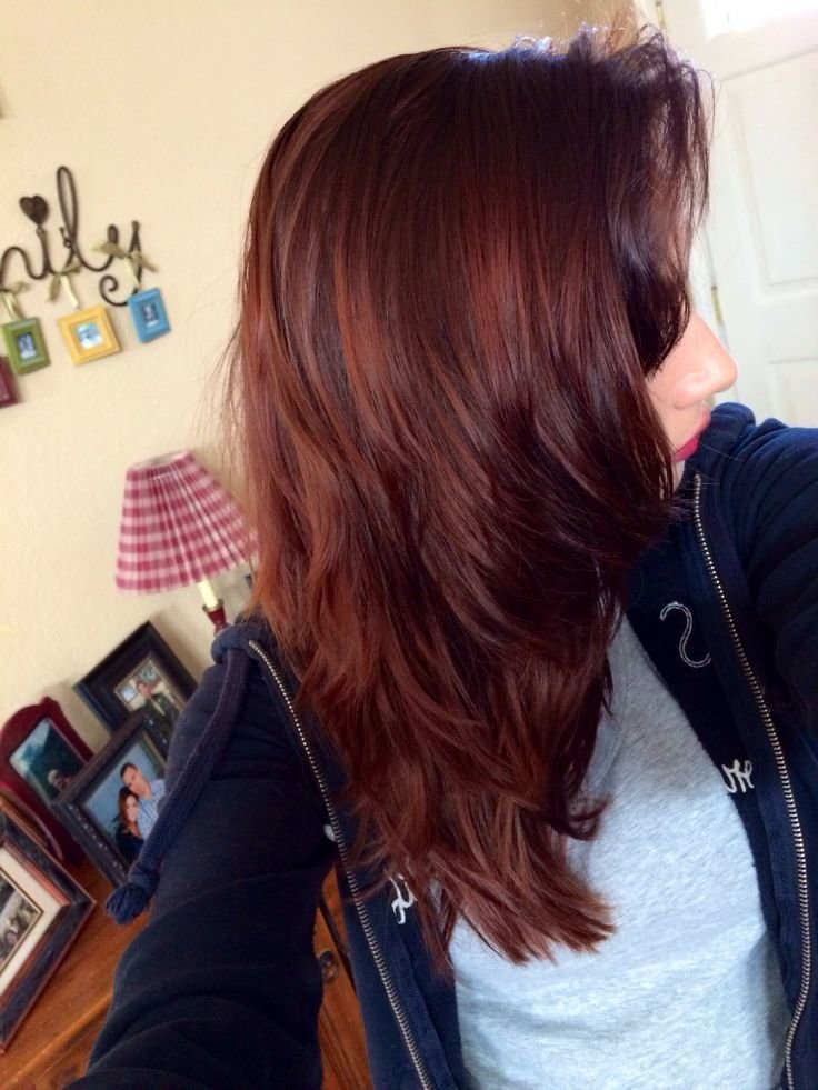 The Best Age Beautiful Hair Color Dark Red Mahogany Brown Google Pictures