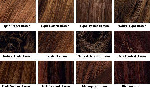 The Best 25 Best Ideas About Shades Of Brown Hair On Pinterest Pictures