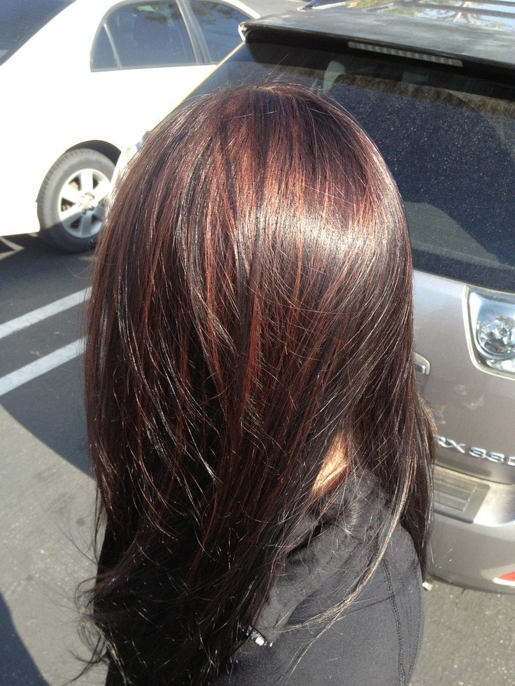 The Best Very Dark Brown With Red Highlights Hair By Barbie De Hart Pictures