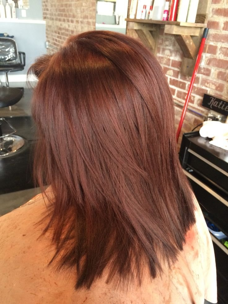 The Best 25 Best Ideas About Red Brown Hair On Pinterest Red Pictures