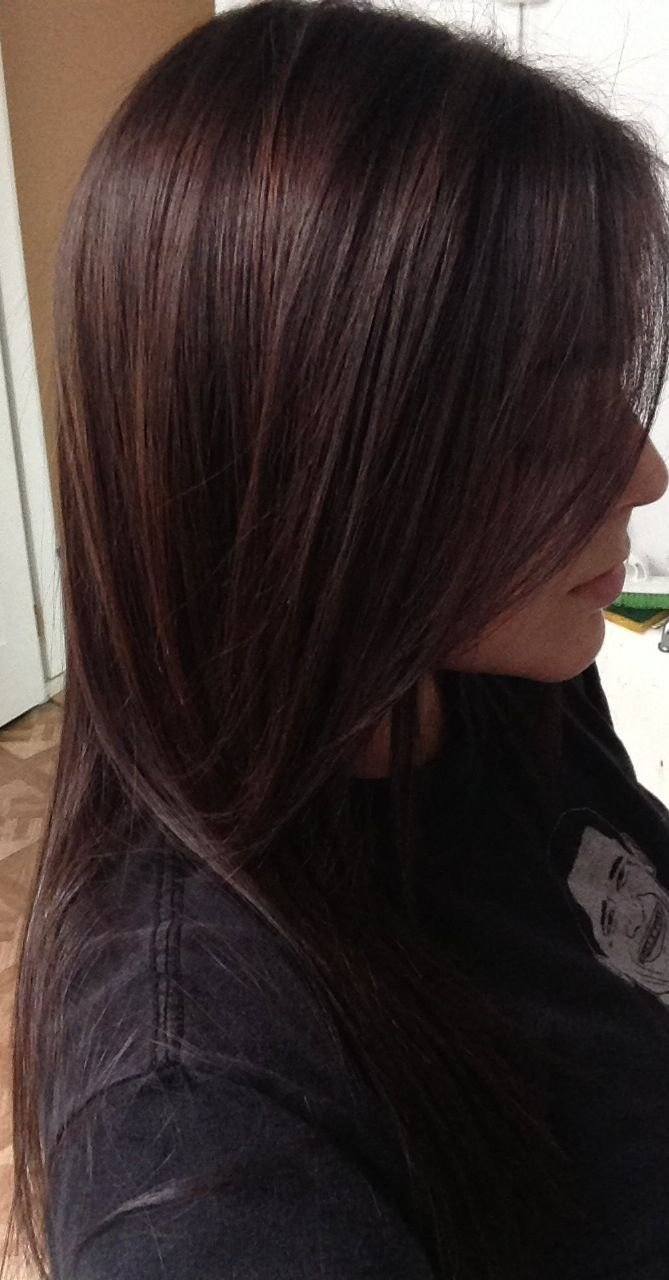 The Best Paul Mitchell Pm Shines Half 4N Half 5N Brunette Hair Pictures