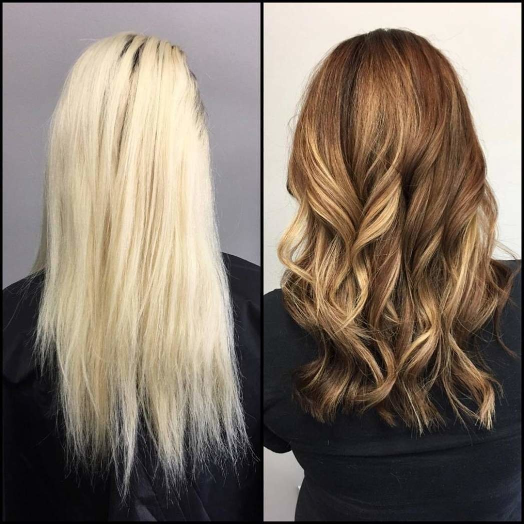 The Best Why Does Hair Color Correction Cost So Much Anazao Pictures
