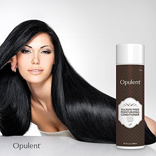 The Best Moroccan Argan Oil Hair Conditioner Sulfate Free After Pictures