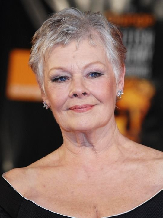 The Best Dame Judi Dench S Hairstyle Style Pinterest Pictures