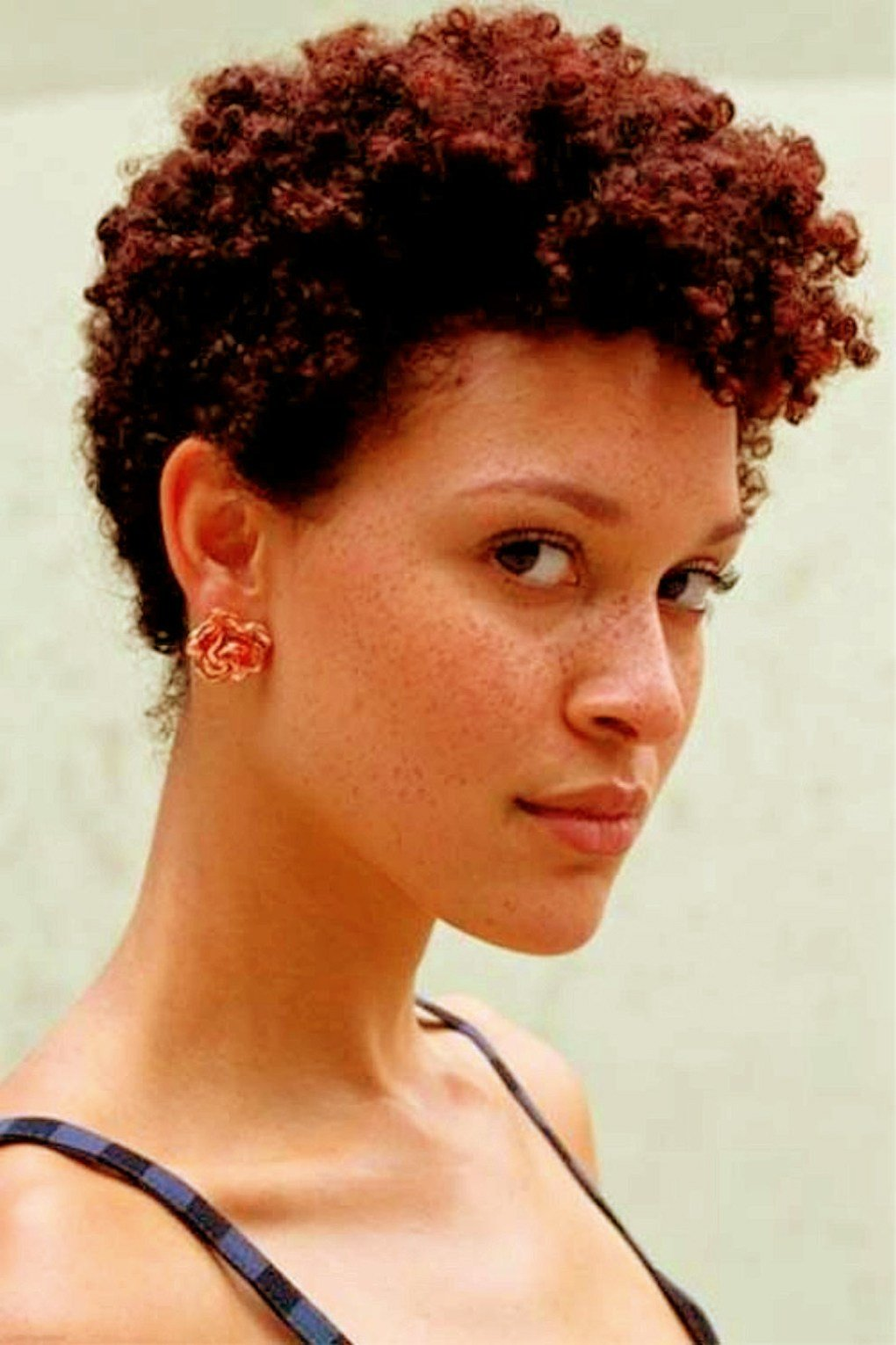 The Best Top 10 Natural Hairstyles For Short Hair Amo Pictures