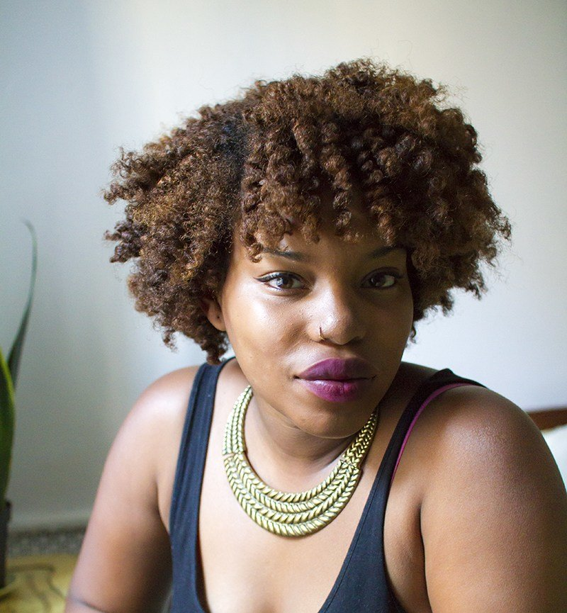 The Best Natural Hair Two Strand Twists – A Beautiful Mess Pictures