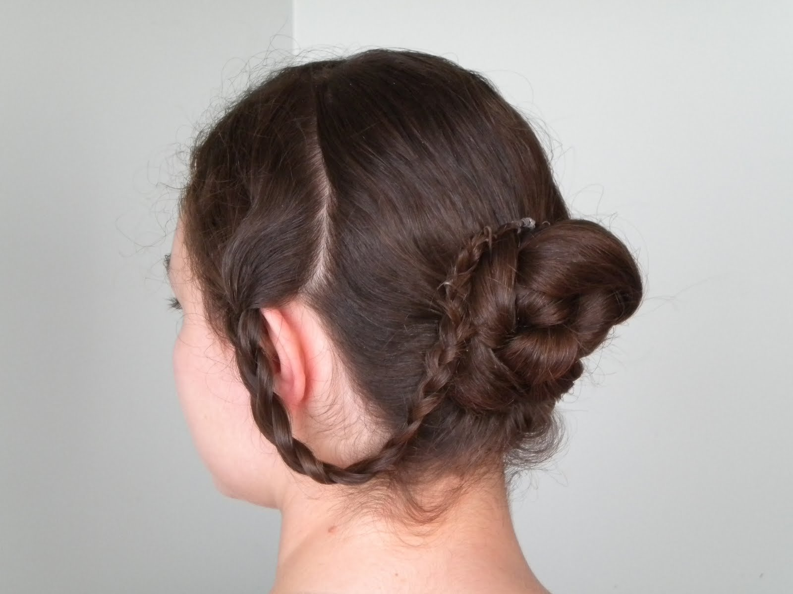 The Best Hair Styles Braided Victorian Hairstyle Pictures