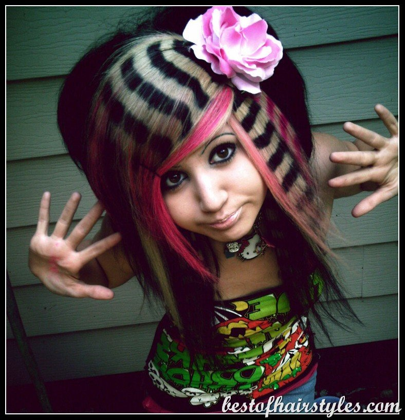 The Best Women Trend Hair Styles For 2013 Crazy Hairstyles Pictures