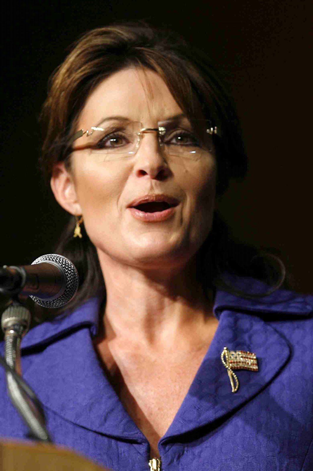 The Best Sarah Palin Hairstyle Sarah Palin Hairstyles Pictures