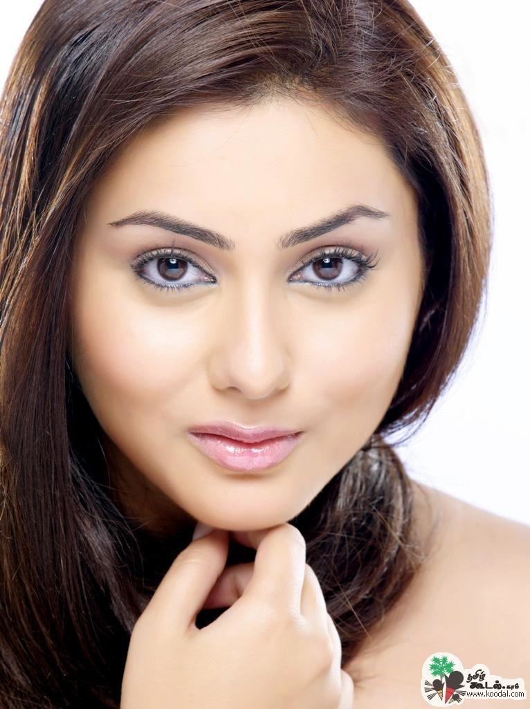 The Best Blogger I Love You South Indian Actress Namitha Hairstyle Pictures