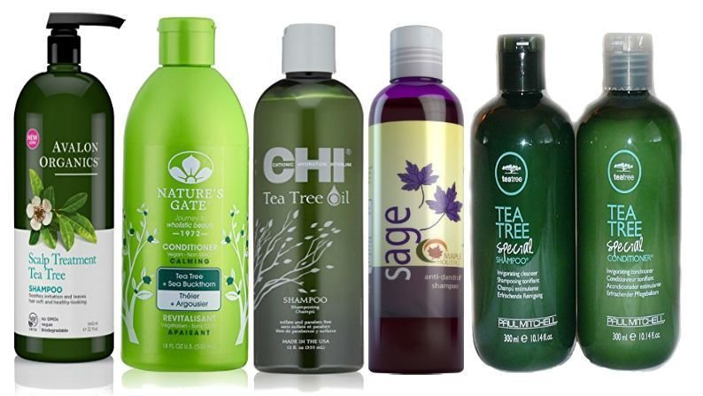 The Best Best Shampoo For Color Treated Hair Pictures