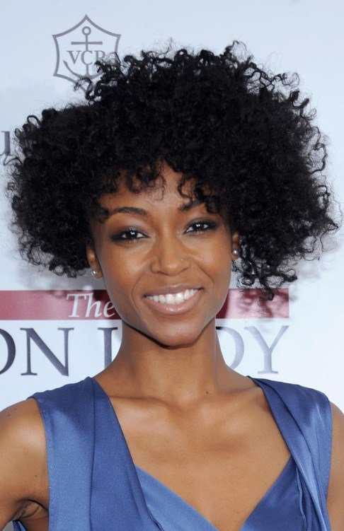 The Best 70 Great Short Hairstyles For Black Women Pictures