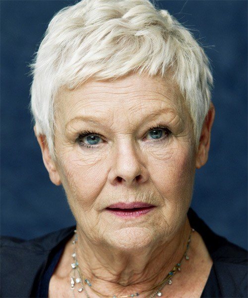The Best Judi Dench Short Straight Casual Hairstyle Pictures