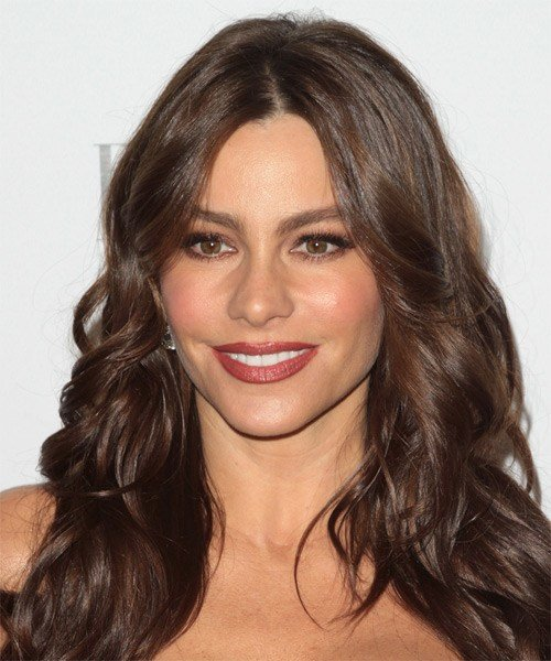 The Best Sofia Vergara Hairstyles In 2018 Pictures