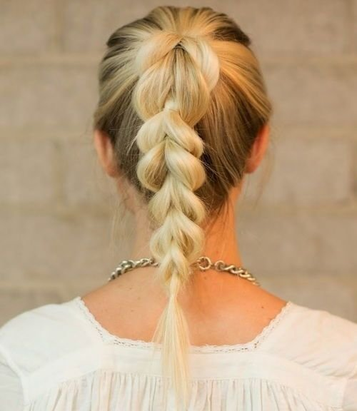 The Best 38 Quick And Easy Braided Hairstyles Pictures