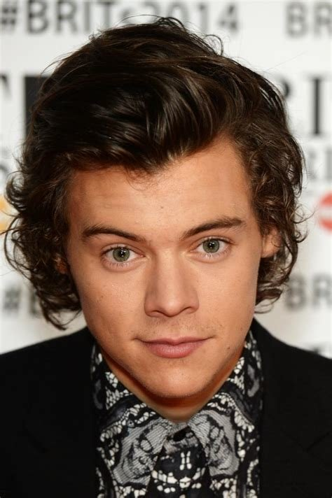 The Best Harry Styles Facts 14 Things You Might Not Know About The Pictures