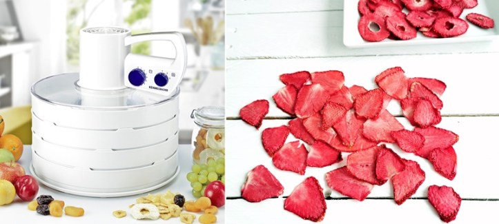 DA 750 Dörrgerät und gedoerrte Erdbeeren