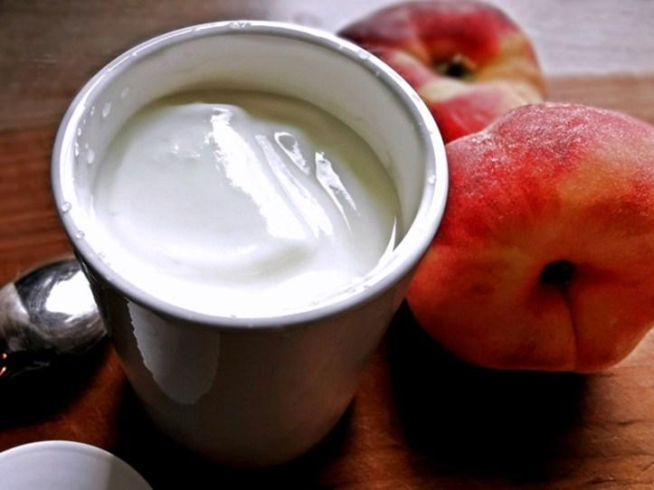 Naturjoghurt und Pfirsiche - selbstgemacht mit Rommelsbacher Joghurtbereiter