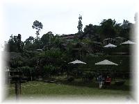 Rumah Stroberi - View