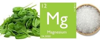 A magnézium a legkritikusabb ásvány, amely minden test sejtjének elektromos stabilitásához szükséges.