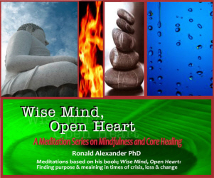 Wise Mind, Open Heart