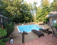 BRS Backyard, Garden & Pool Area