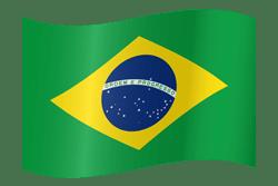 Portuguese (BR)