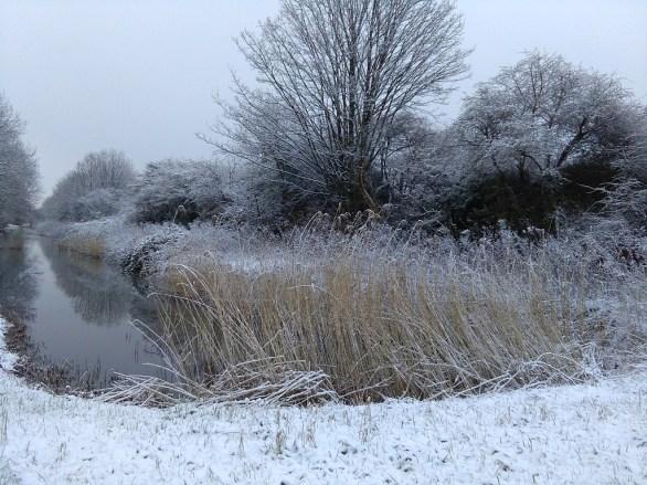 Winter landscapes-5