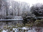 Winter landscapes-4