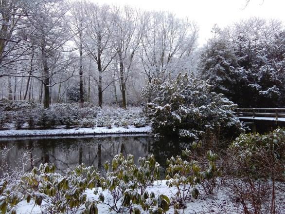 Winter landscapes-4