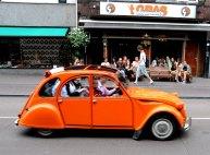 Oranje 02 (C) Ronald Puma.nl