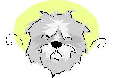 English (correct) sheep dog:-)